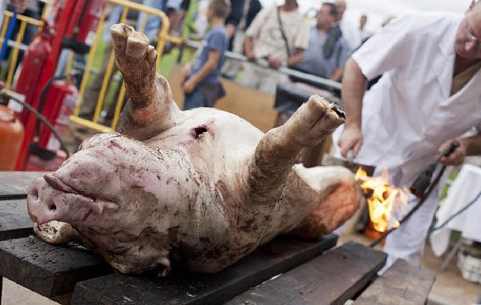 Matança del porc