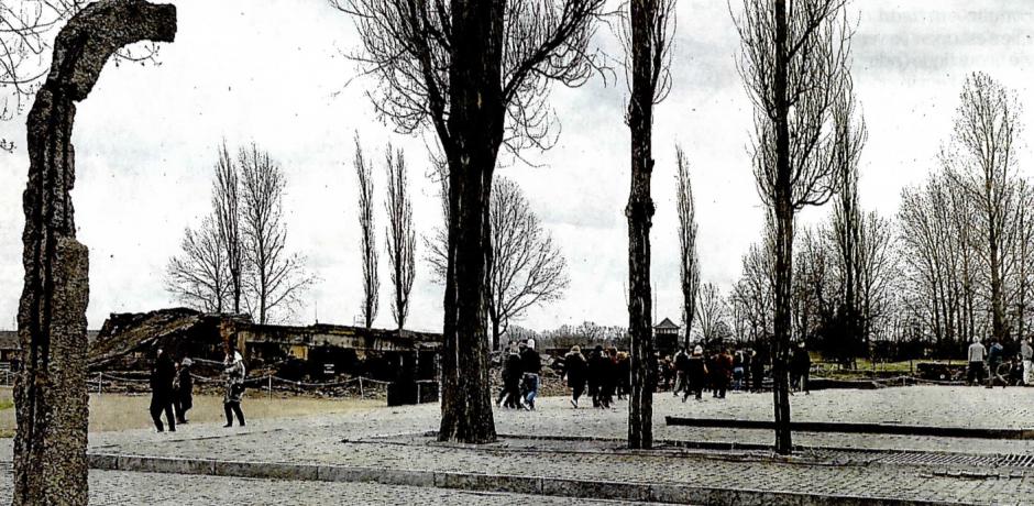 Après Auschwitz, le message des lycéens d'Arago, passeur de mémoire