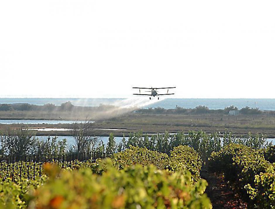 Pesticide. L'arrêté décrié n'est pas suspendu