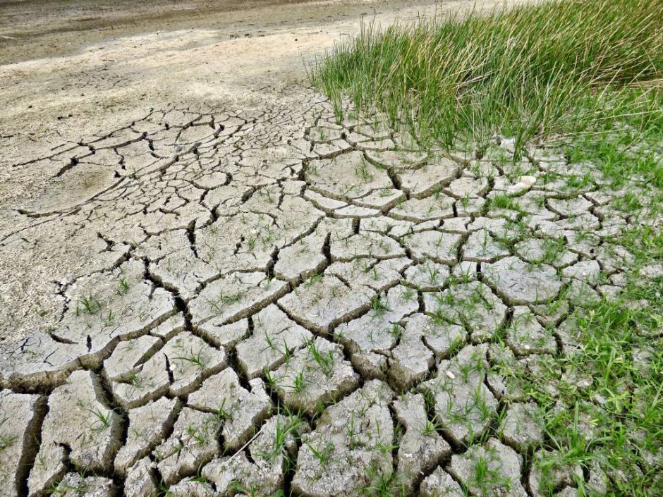 Du réchauffement climatique à la montée des prix