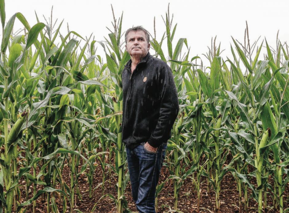 Glyphosate. Les enjeux de la condamnation de Monsanto