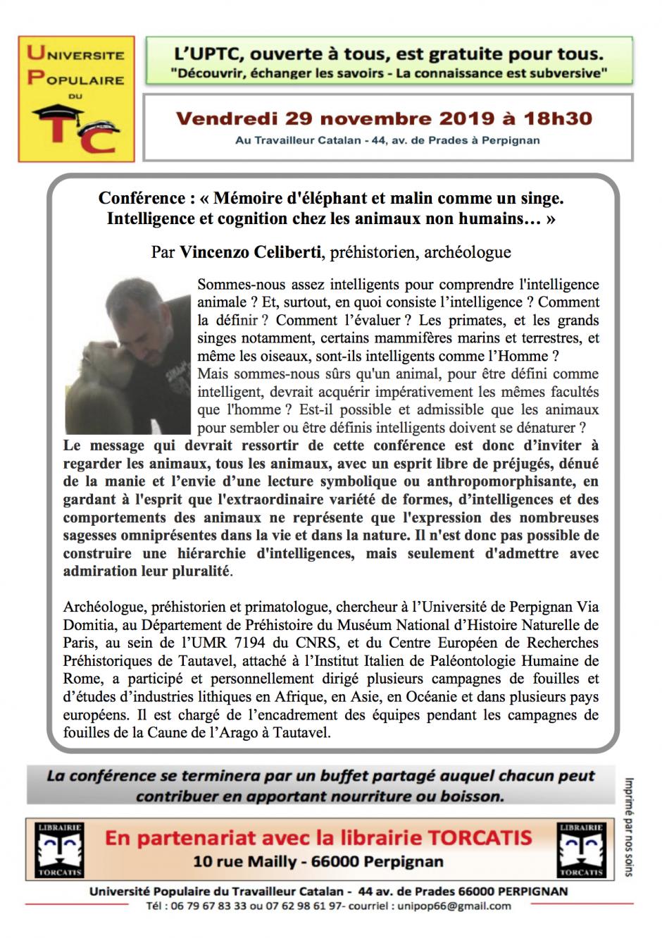 UPTC. « Mémoire d'éléphant et malin comme un singe. Intelligence et cognition chez les animaux non humains... »
